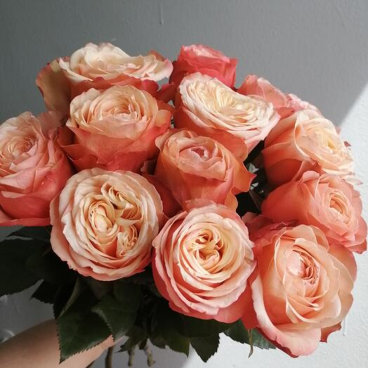 Букет из 15 пионовидных роз