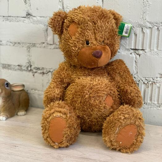 Мишка Tad