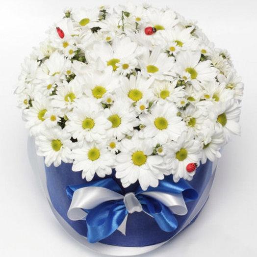 Ромашковые облака: букеты цветов на заказ Flowwow