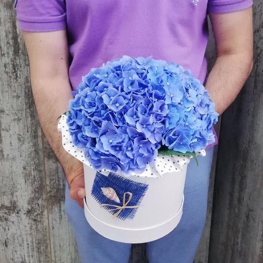 З гортензии в шляпной коробке: букеты цветов на заказ Flowwow