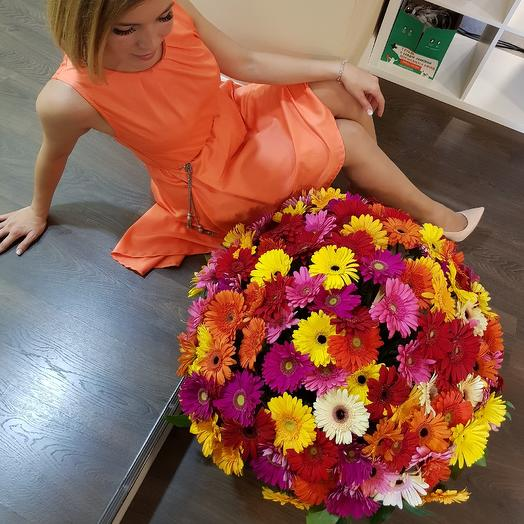 Гербера  мини: букеты цветов на заказ Flowwow
