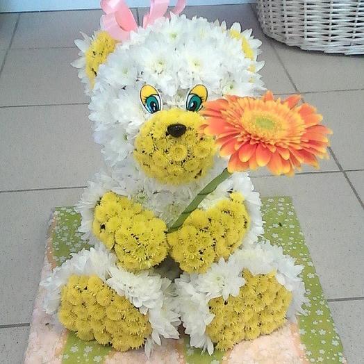 Мишутка: букеты цветов на заказ Flowwow