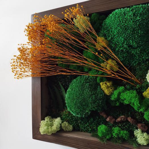 Картина из растений: букеты цветов на заказ Flowwow