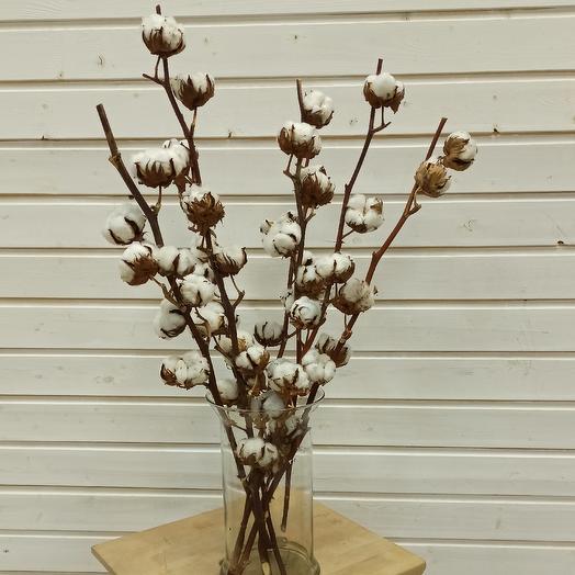 Хлопок на ветке: букеты цветов на заказ Flowwow