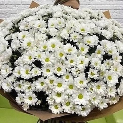Букет «51 хризантема»