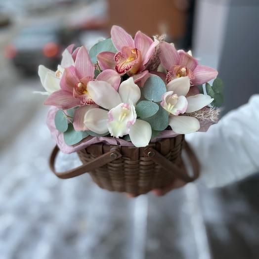 Luxury orchids in a basket