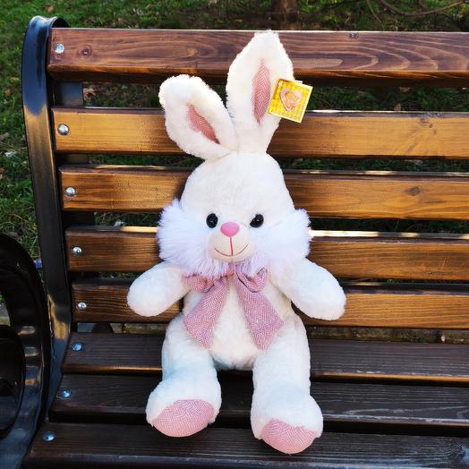 Bunny poprygayka