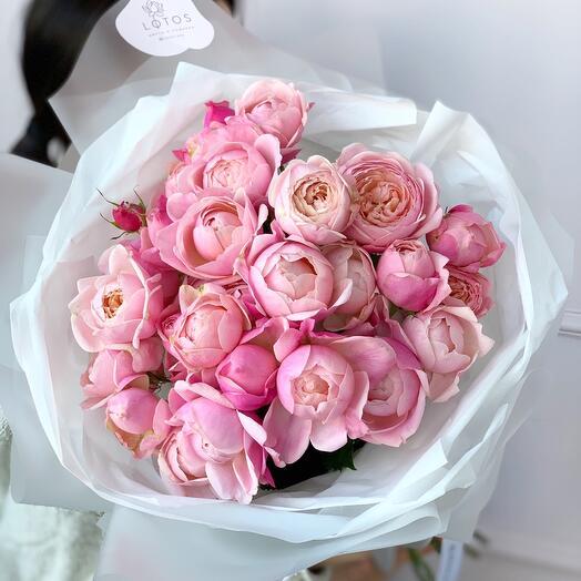 Пионовидная роза Сильва Пинк