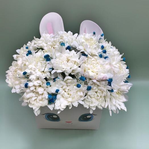 Цветы в коробке Хризантема