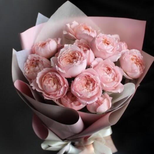 Роза пион Джульетта Английская Прима