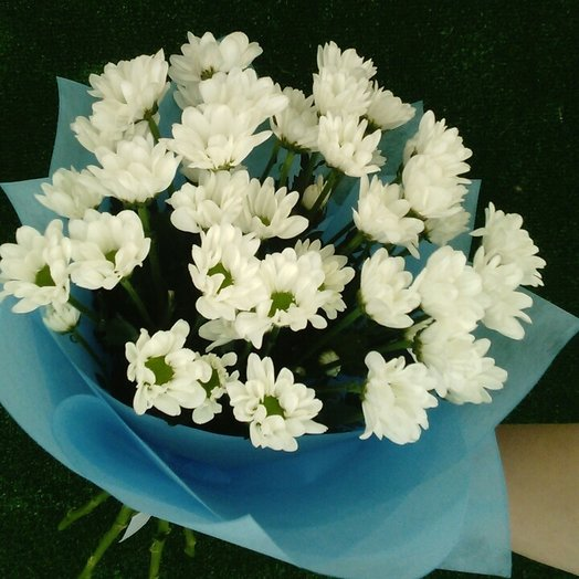 Белые пушистики: букеты цветов на заказ Flowwow
