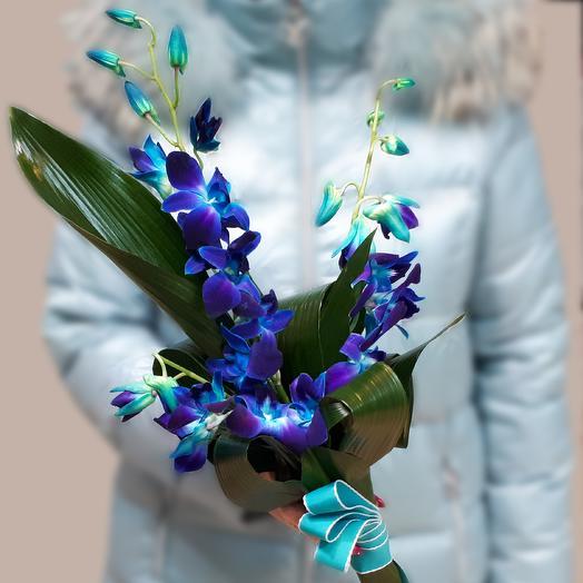 Синяя птица удачи: букеты цветов на заказ Flowwow