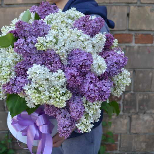 Запах сирени: букеты цветов на заказ Flowwow
