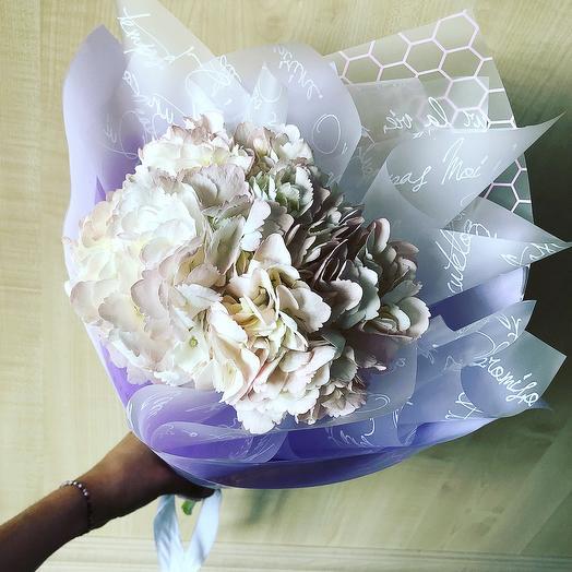 """Гортензия """"Sweet dream"""": букеты цветов на заказ Flowwow"""