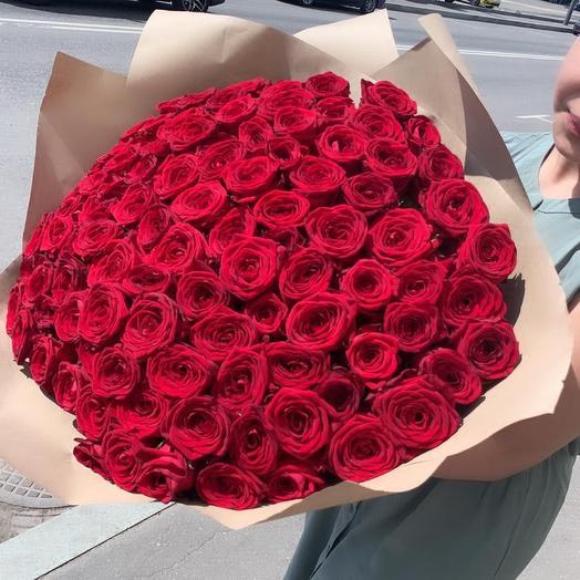 Красная Роза 🌹 101