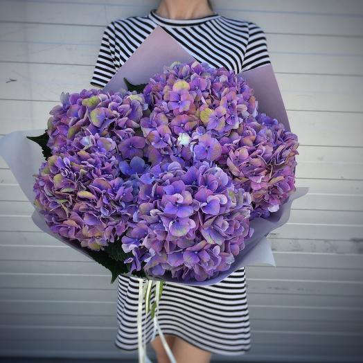 Букет фиолетовых гортензий (5шт)