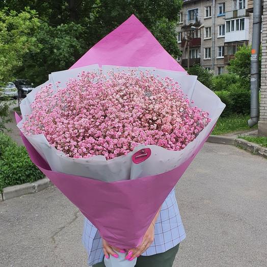 Букет из розовой шипсофилы