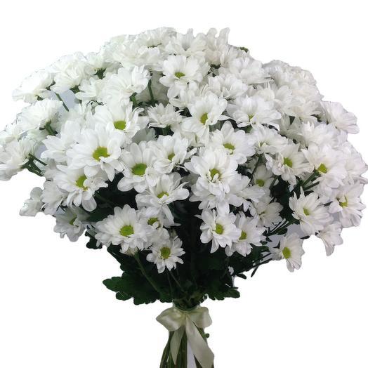 Охапка белых хризантем 15 шт