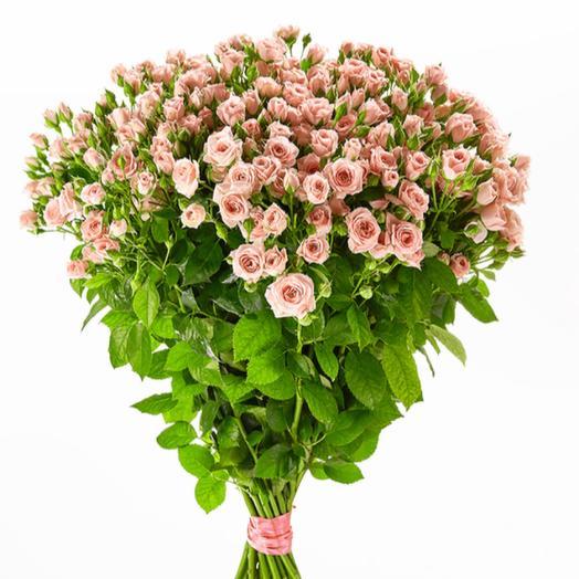 Кустовая Роза «Лидия»