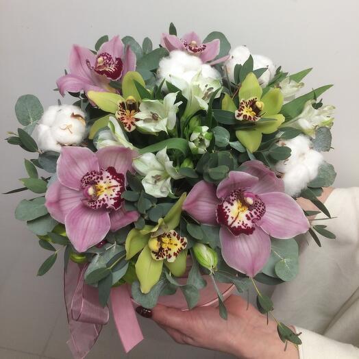 Орхидеи в цвету