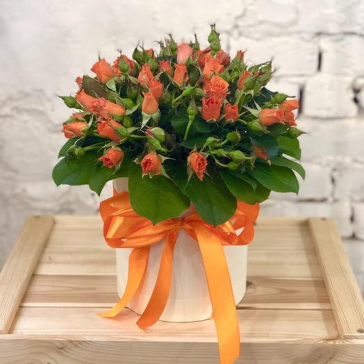 Оранжевая кустовая роза в шляпной коробке: букеты цветов на заказ Flowwow