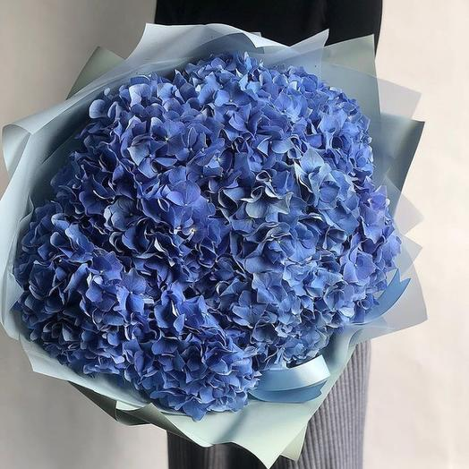 """Гортензия синяя 7"": букеты цветов на заказ Flowwow"