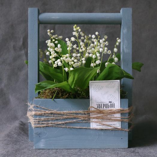 Шкатулка с ландышами: букеты цветов на заказ Flowwow