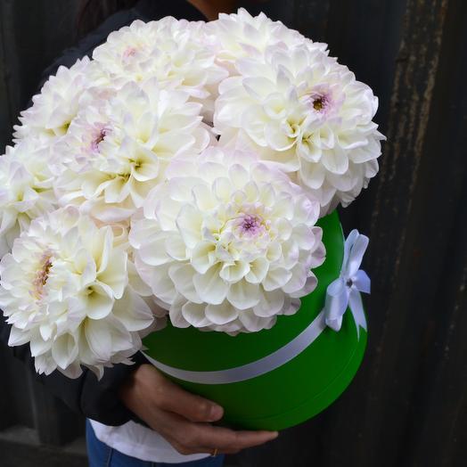 Нежный Аромат Георгин: букеты цветов на заказ Flowwow