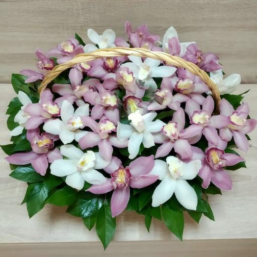 Корзина с розовыми и белыми орхидеями