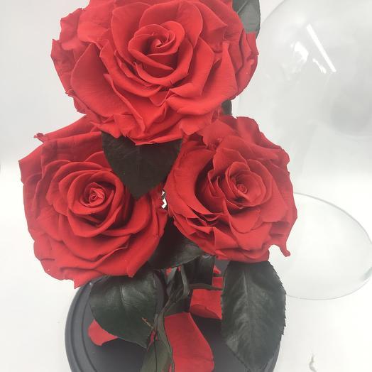 Красные розы в колбе TRIO: букеты цветов на заказ Flowwow