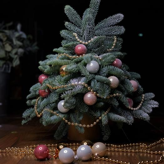 The Christmas Tree: flowers to order Flowwow