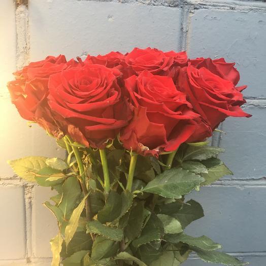Роза красная 11 шт: букеты цветов на заказ Flowwow