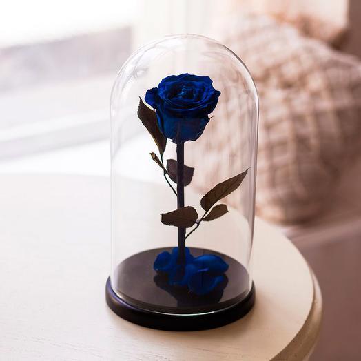Роза в колбе «King» синяя