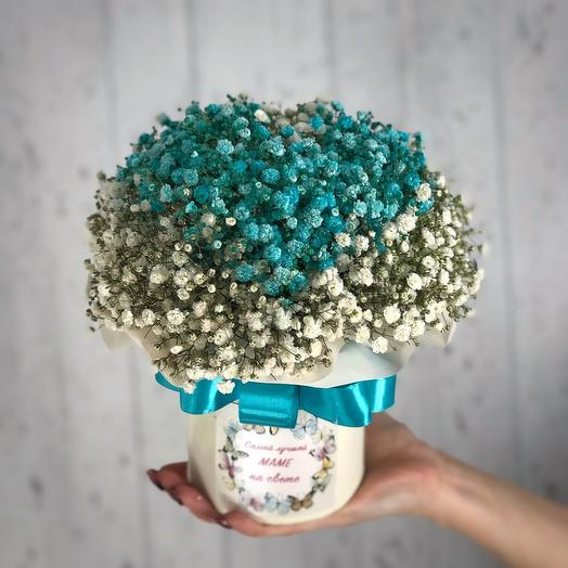 Heart of turquoise baby's breath in a box