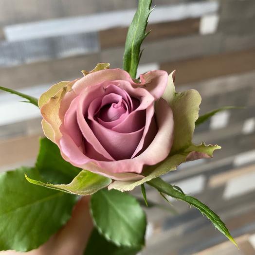 Фиолетовая роза 40см