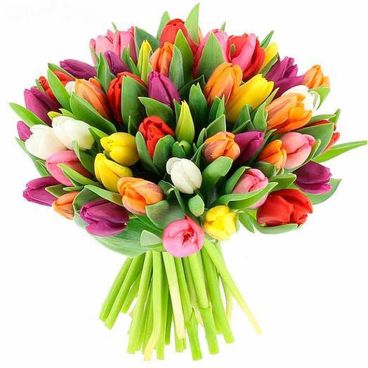 Букет из 51 разноцветных тюльпанов