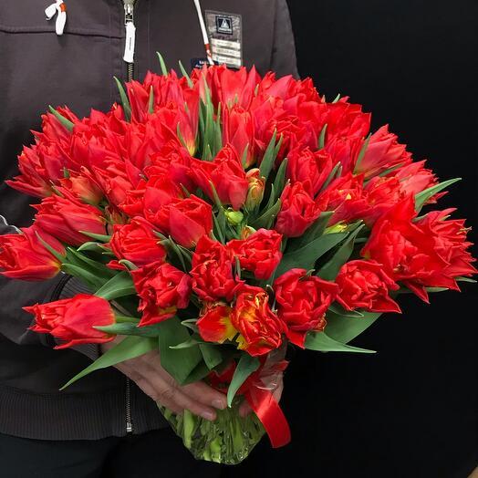 Букет из 51 махрового тюльпана