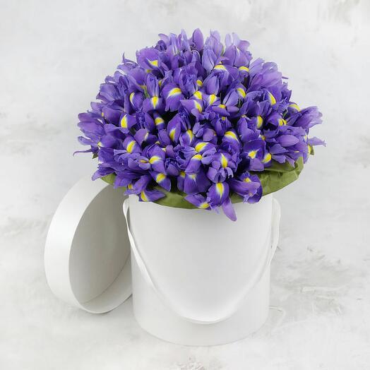 Цветы в коробке ирисы 51 шт