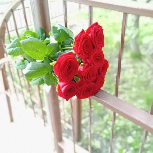 Девять роз