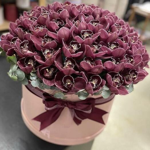 101 орхидея в коробке
