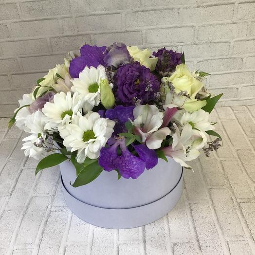Цветы в коробке  «Французский  сад»