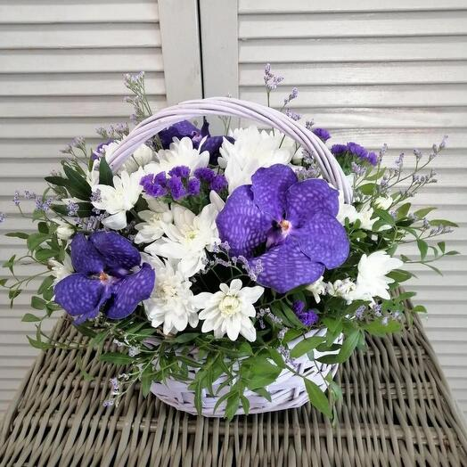 Корзина с орхидей Ванда