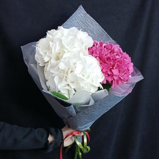 Букет из белой и розовой гортензии