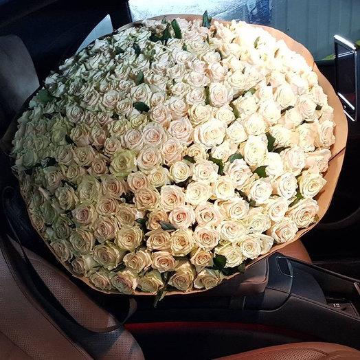 201 кремовая роза : букеты цветов на заказ Flowwow
