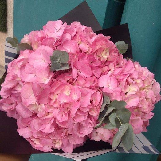 Букет из 3 розовых гортензий: букеты цветов на заказ Flowwow