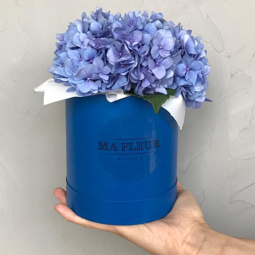 Гортензия в шляпной коробке-мини: букеты цветов на заказ Flowwow