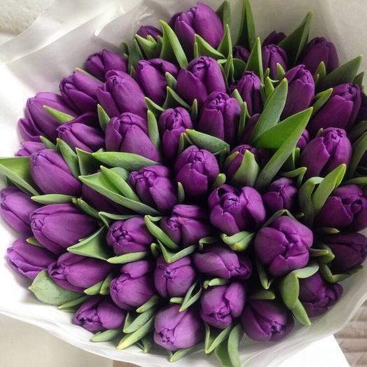 51 Фиолетовый: букеты цветов на заказ Flowwow