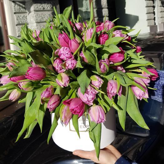 Огромная коробка тюльпанов: букеты цветов на заказ Flowwow