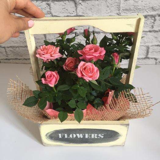 Ящик с садовыми розами