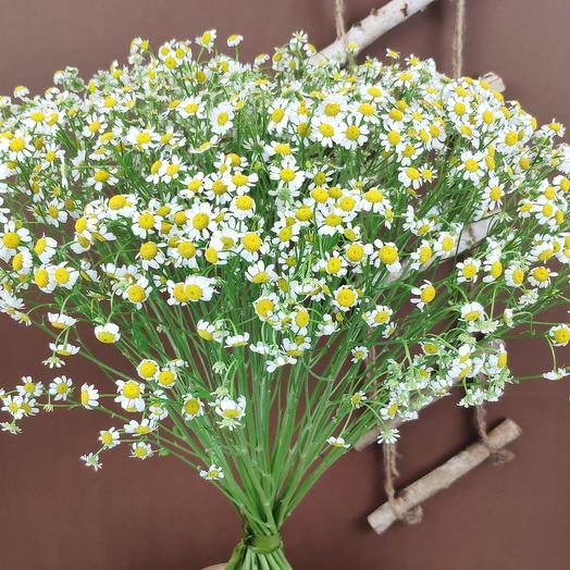 Раз ромашка, два ромашка: букеты цветов на заказ Flowwow